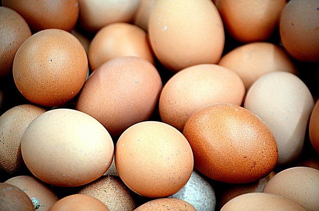 ovo contém ômega 3, proteína e vitaminas