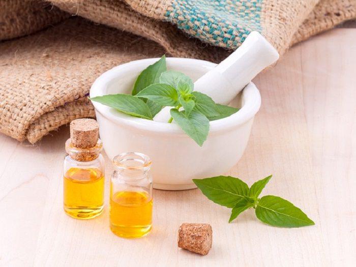 manjericão na medicina alternativa