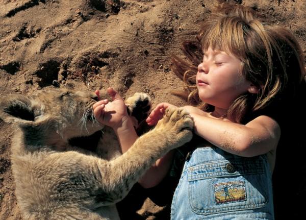 menina, animais selvagens