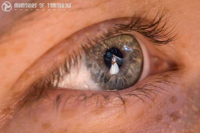 Imagens de Casamento Capturadas nos Olhos