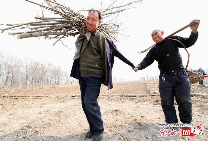 chineses, boas ações