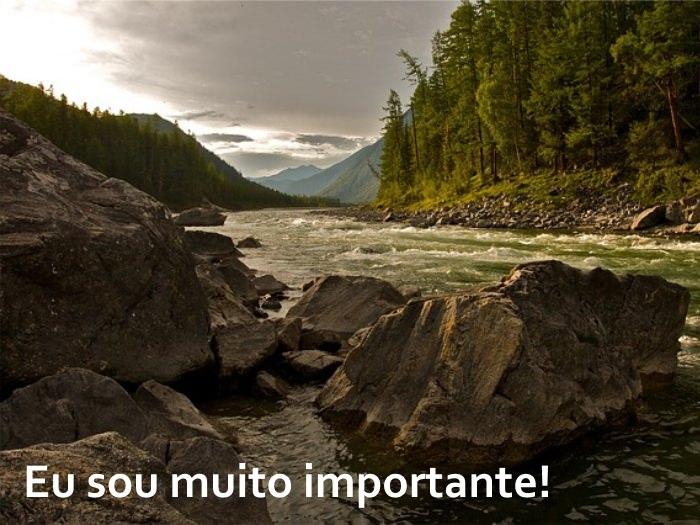 Uma mensagem para todos os humanos