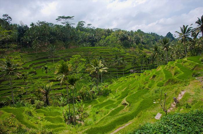 beleza, paisagens, mundo