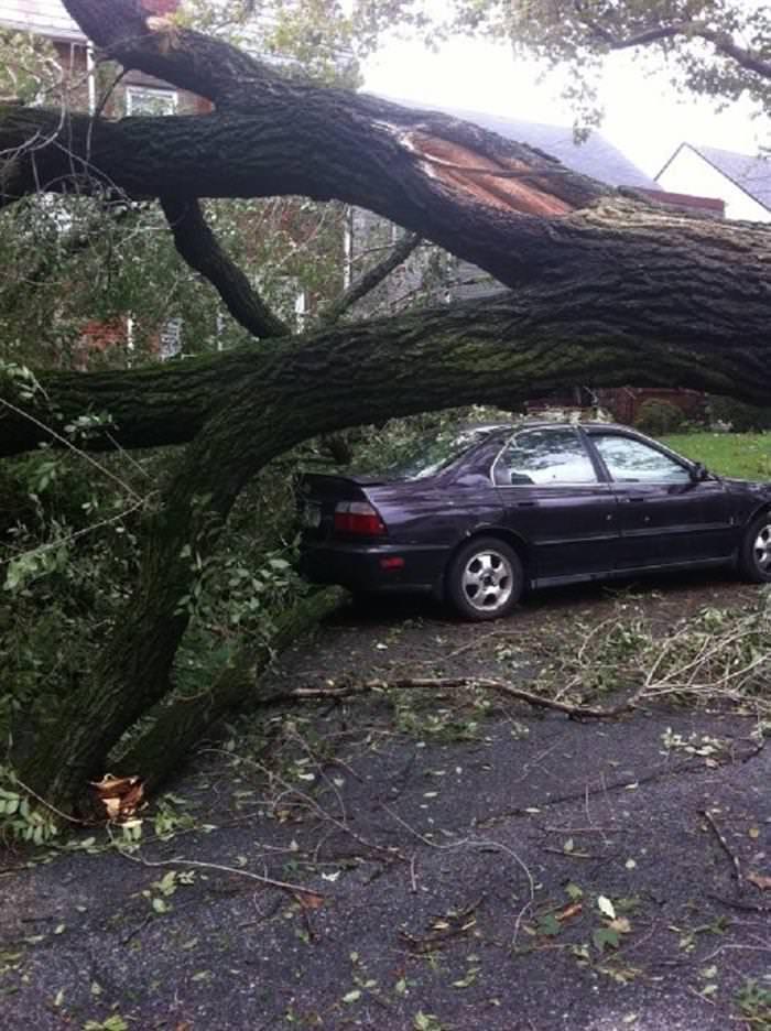 natureza, desastres