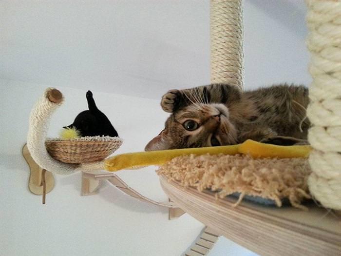 Se Meu Gato For Pro Paraíso, é Assim Que Vai Ser