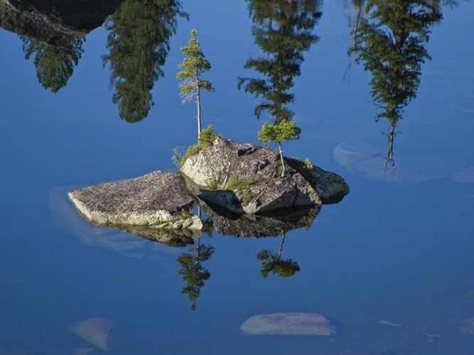 fotografia, natureza