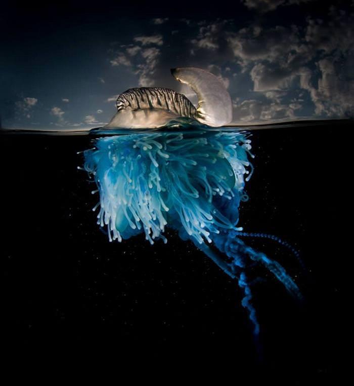 O Que Está Abaixo do Oceano