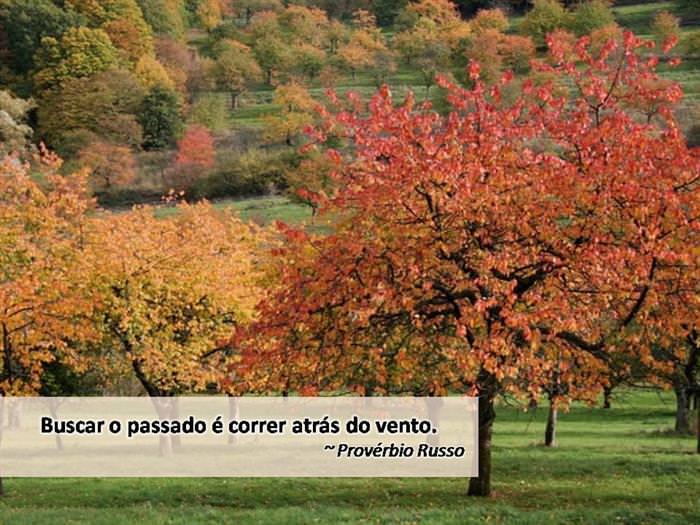 frases de outono