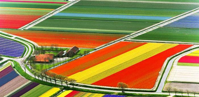 cores, terra