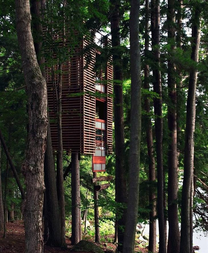 modernas casas de árvore