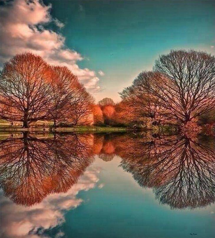 Belas fotografias que refletem