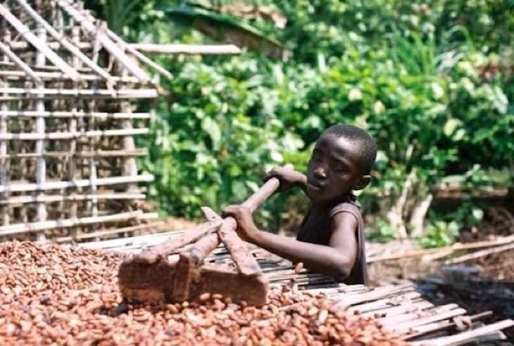curiosidades sobre o chocolate