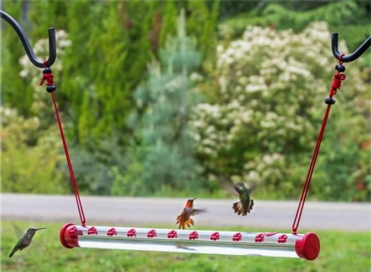 invenções para proteger animais selvagens