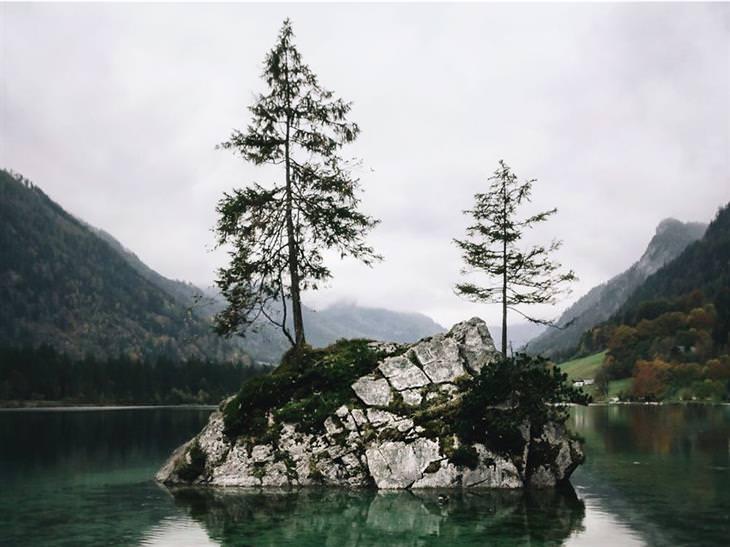 lindas imagens da natureza