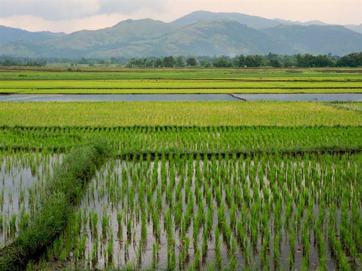 história e imagem das filipinas