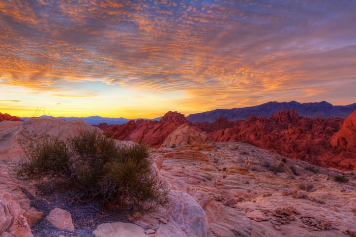 10 lugares pra visitar em Las Vegas