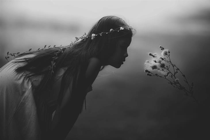 Passei para Lembrar que Há Magia em Você