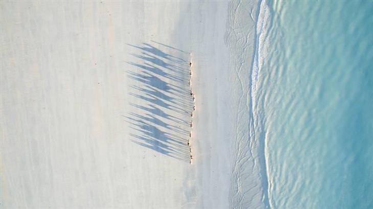 as melhores fotos de drone do ano