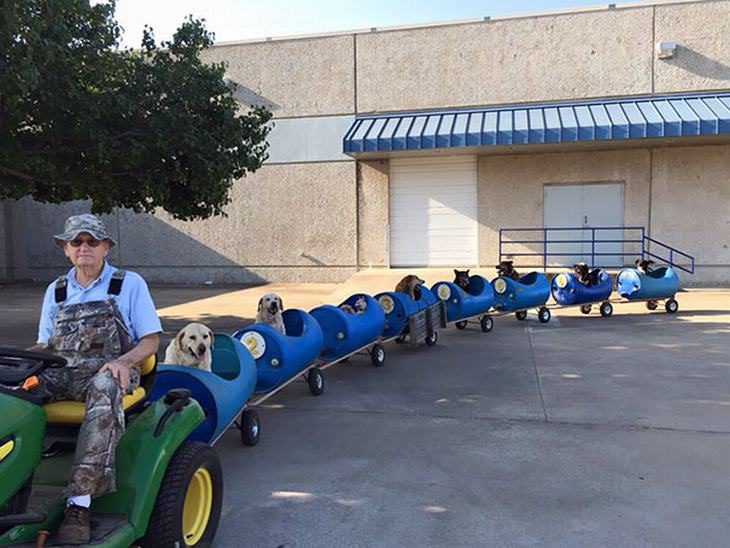 15 donos de cães que tiveram uma ótima ideia
