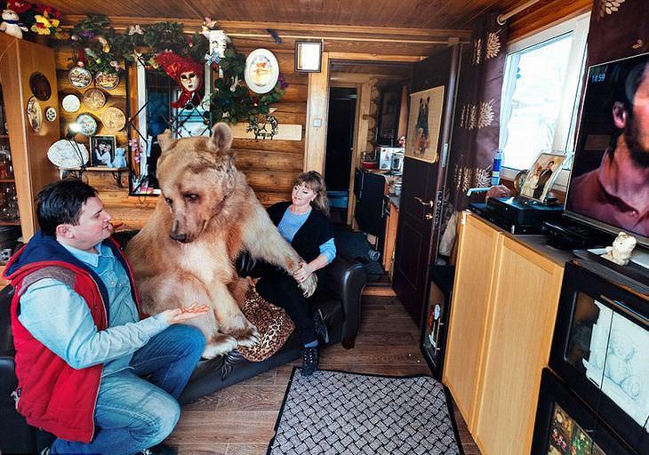Família que adotou um urso