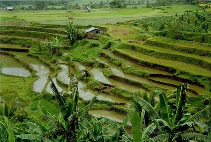 turismo indonésia