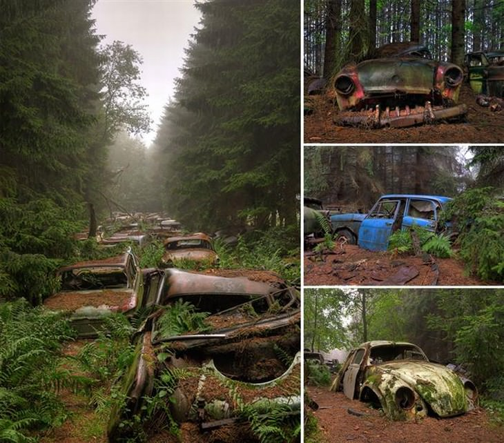 13 Lugares Que a Natureza Tomou de Volta