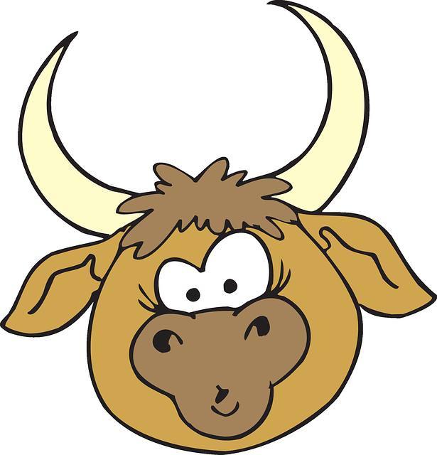 Piada hilária: esposo incomodado X touro reprodutor!