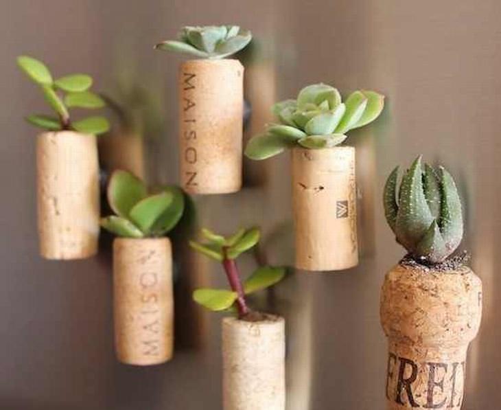 Ideias Criativas Para Ter Plantas em Casa