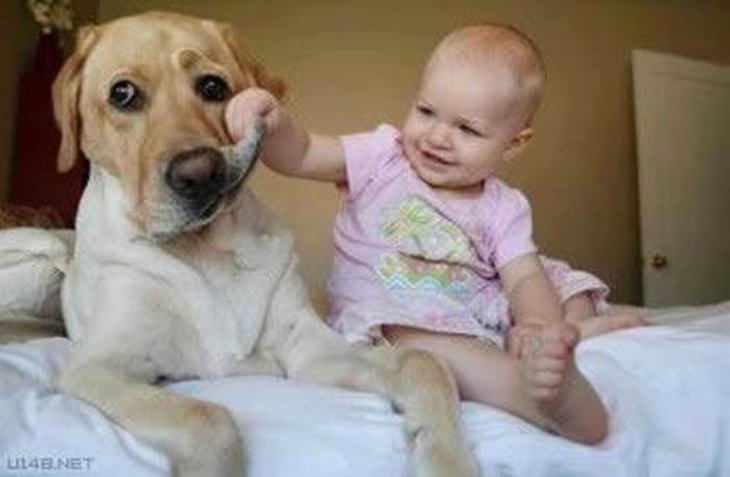 As Babás Mais Leais do Mundo!
