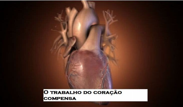 25 curiosidades sobre o coração humano