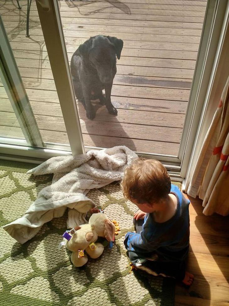 19 coisas hilárias que as crianças fazem aos animais de estimação