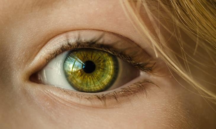 Cientistas encontraram uma maneira de reverter a cegueira relacionada à idade!
