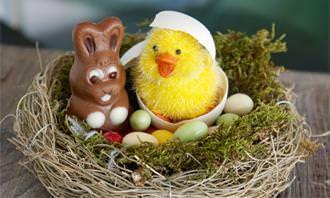 chcoelhinho de chocolate com pelúcia e ovos