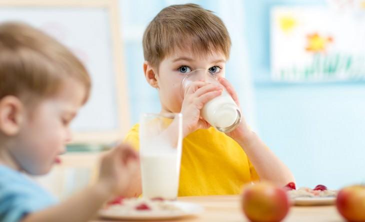 5 razões para beber leite de cabra