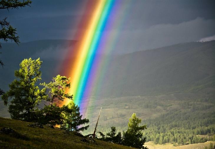 16 imagens incríveis da natureza tudoporemail
