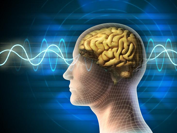 A aprendizagem contínua melhora o desempenho do seu cérebro