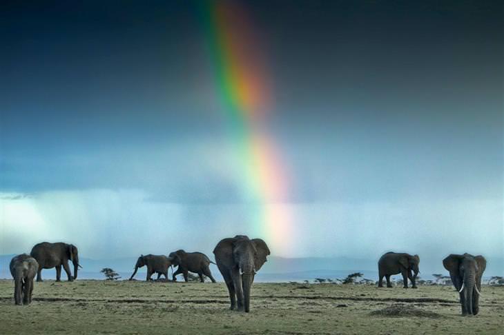 belezas da África