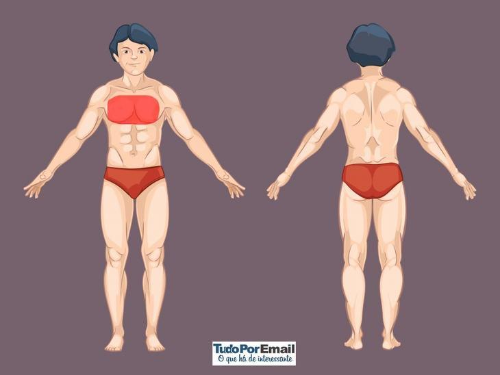 dores que indicam problemas de saúde nos órgãos