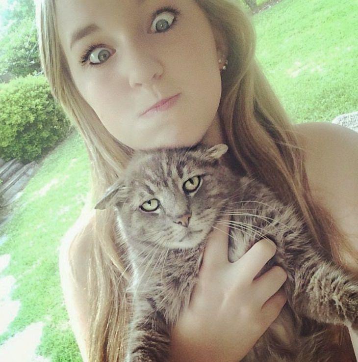 fotos engraçadas de gatos que odeiam tirar fotos
