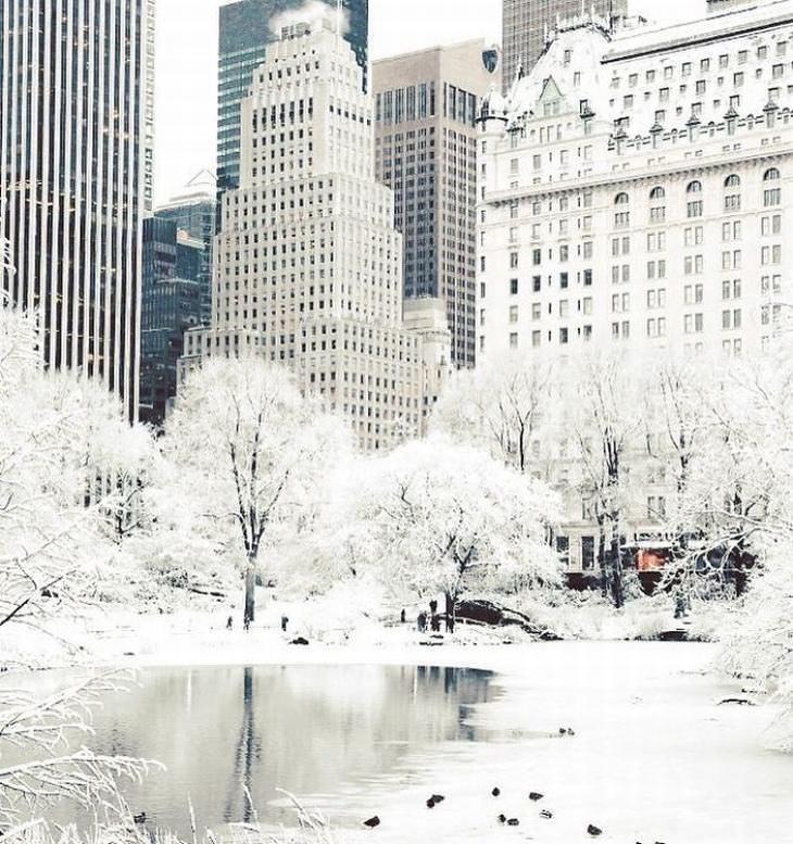 inverno na américa do norte