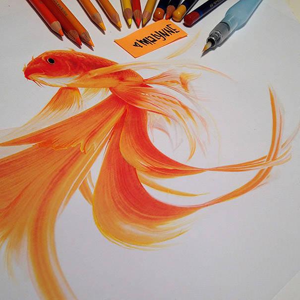 as cores de Karla Mialynne