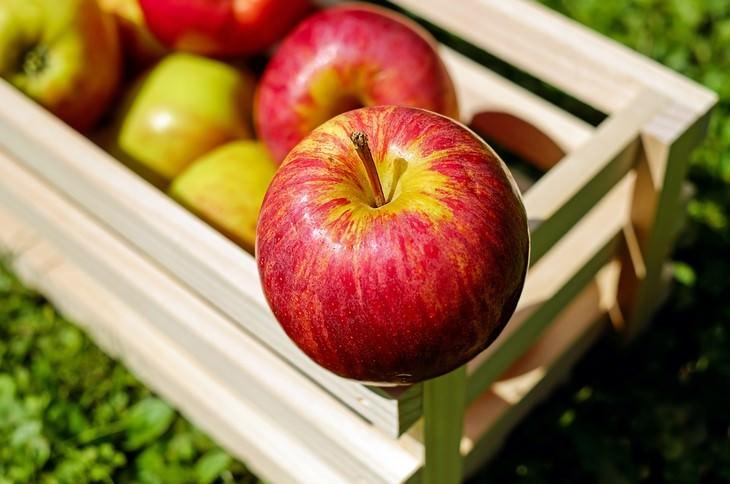 10 Alimentos que ajudam a clarear os dentes