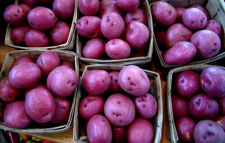 batata roxa ajuda a combater o câncer