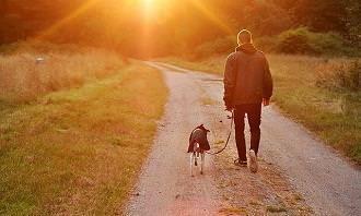 homem passeia com cachorro