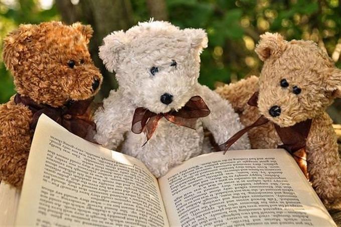 3 ursinhos de pelúcia lendo livro