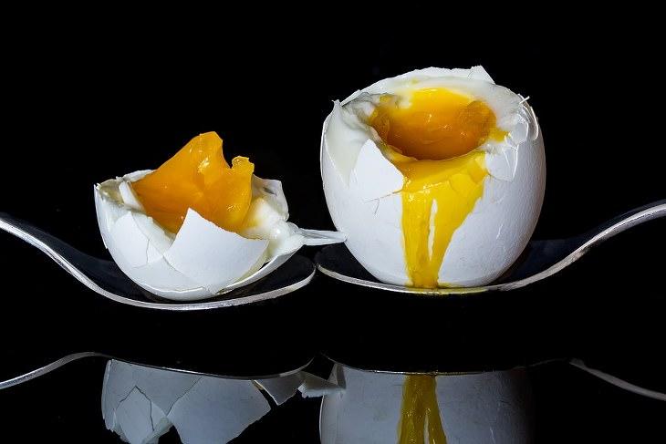 gema de ovo