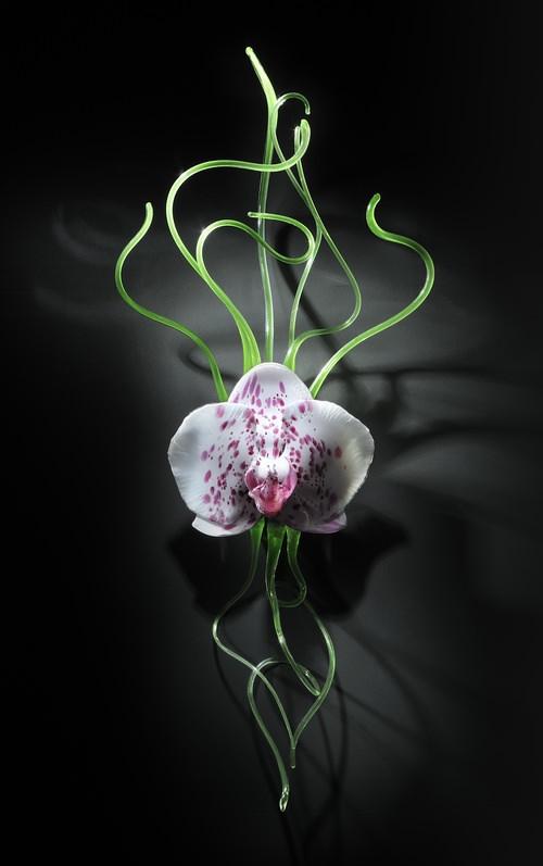 flores, vidro