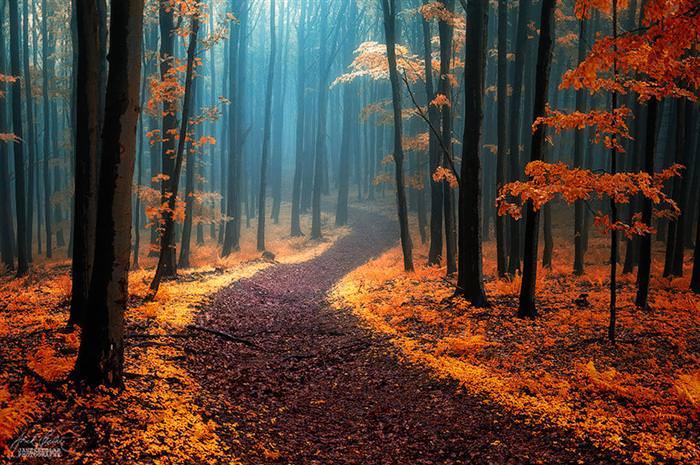 caminhos, estradas