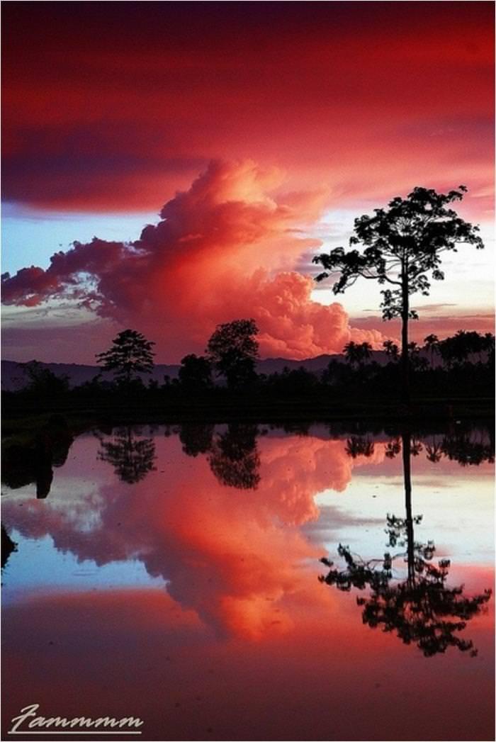 imagens, reflexo, natureza