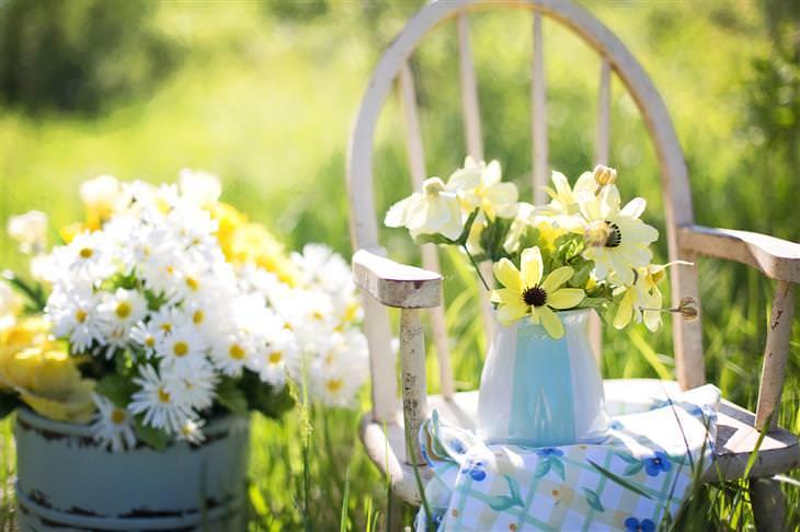 Aprenda a fazer um jardim